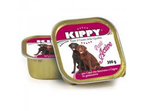 Kippy Dog alu active 300g, 18ks/karton.